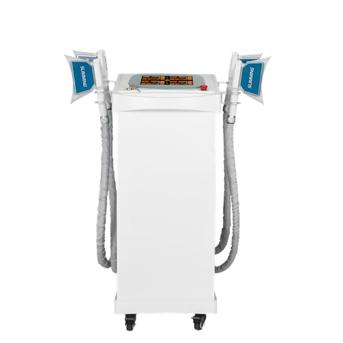 Professionelle Weight Loss Fat Freeze Maschine