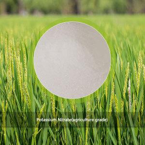 Potassium Nitrate(agriculture grade)