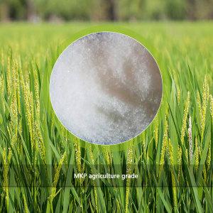 MKP 0-52-34 agriculture grade