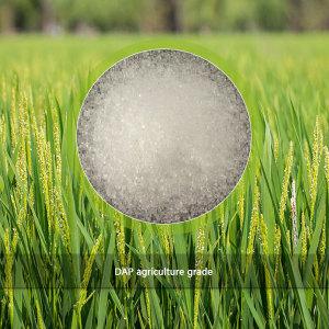 DAP 21-53-0 agriculture grade