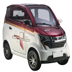 Electric 4 wheeler