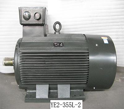 YE3-315.jpg
