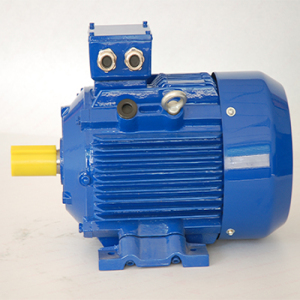 YE3 Series Super Efficiency Three Phase Asynchronous Motor