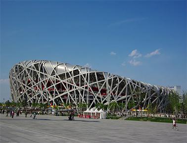 Китайское птичье гнездо