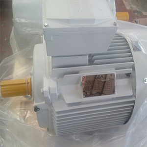 YE2-250M-6