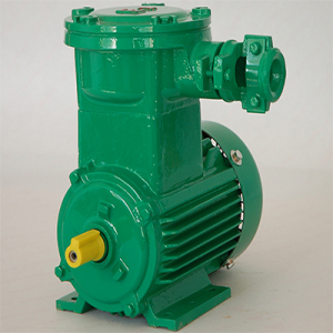 YB3 Series Of Three Phase Flame Proof Asynchronous Motor