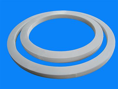 Polymer Gasket