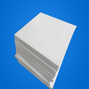 White Moulded PTFE Plate