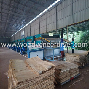 48m 2 Deck Myanmar Biomass Roller Veneer Dryer