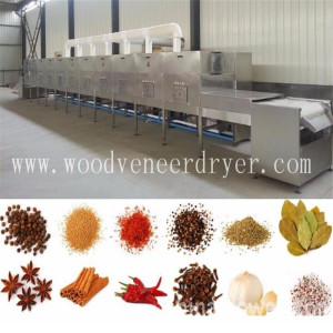 High Tech Industrial Microwave Dryer For India