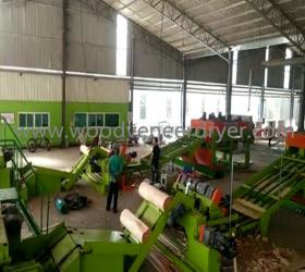Fully Automatic  Plywood Veneer Peeling Production Line