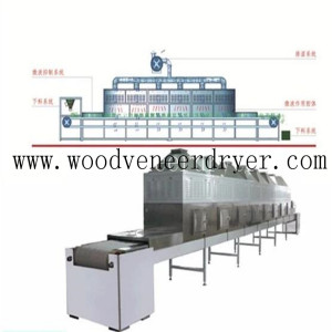 Microwave Drying and Sterilization Equipment for Lobster Shell