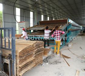 Drying Equipment for Wood Veneer