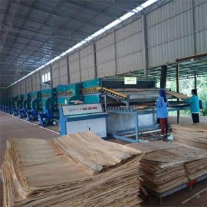 Energy-saving Roller Veneer Dryer For Eucalyptus Wood