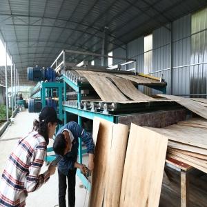 Biomass Wood Veneer Dryer