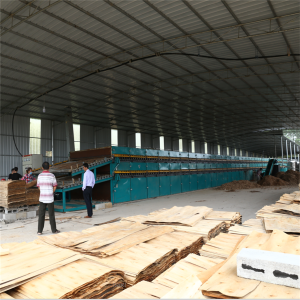 Environmental Face Plywood Veneer Dryer