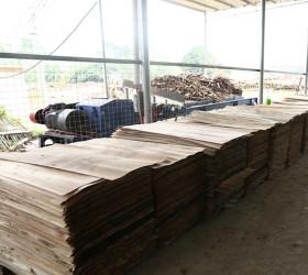 Indusrial Continous Roller Wood Veneer Drying Machine
