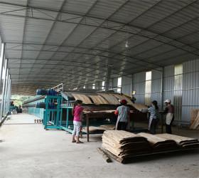 Popular Wood Veneer Drying Machine