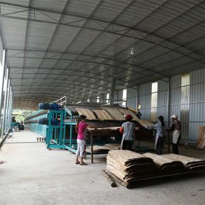 Birch Tree Veneer Dryer Machinery