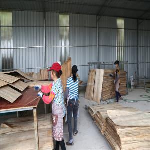 Biomass Plywood Veneer Dryer Machine