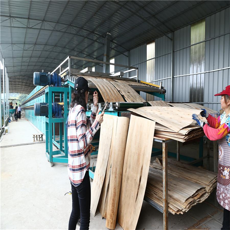 Roller veneer dryer