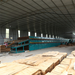 Professional Veneer Roller Dryers in China