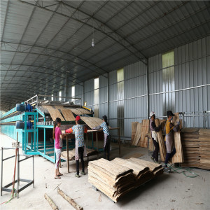24m 2 Deck Roller Veneer Drying Machine