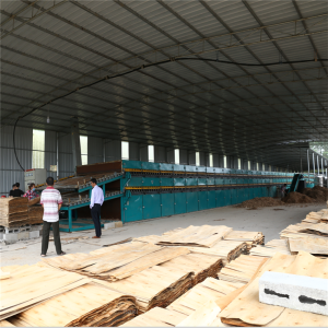 Wood Roller Veneer Drying Machine in Plywood Production Line
