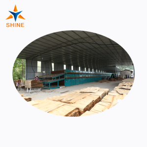 Veneer Drying for Plywood Production Line
