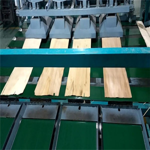 Automatic Feeder Device for Veneer Drying Line