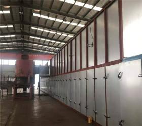 Biomass Roller Wood Veneer Drying Machine