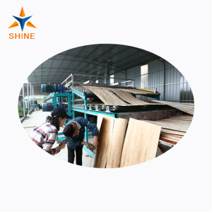 Shine Wood Veneer Dryers Equipment Introduction