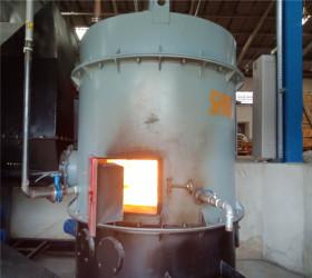 Advanced Biomass Veneer Drying Machines Description