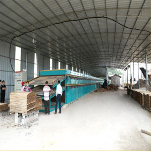 Veneer Roller Dryer Rnning on Biomass Burner