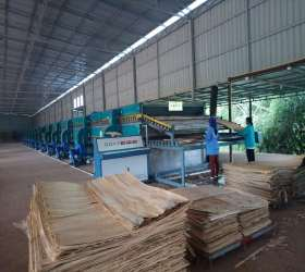 2 Layer Wood Veneer Roller Dryer Machines