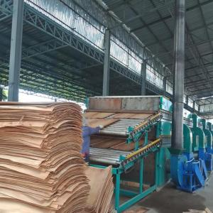 High quality core veneer drying machine for plywood making