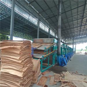Veneer Drying Machine Running on Biomass Burner