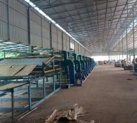 Continuous Peeled Core Veneer Dryer Machine for Plywood