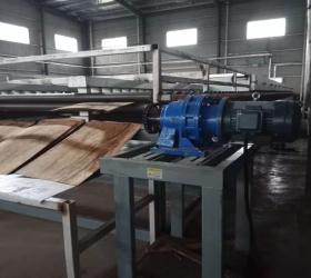 High quality veneer drying press veneer dryer wood Plywood production line