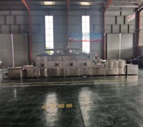 High Efficiency Industrial Microwave Dryer Equipment