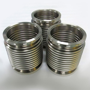 Flanged stainless steel bellows