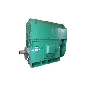 Y series (H400-500) 380V three-phase asynchronous motor