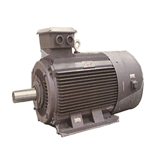 500-400-YVF2 (IP54) series variable frequency speed regulation three-phase asynchronous motor