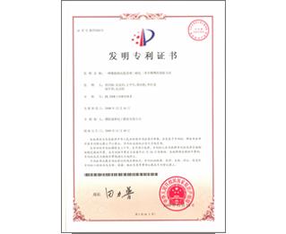 DM patent certificate