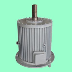 Générateur à aimant permanent Ff-200kw / 350rpm / AC690V (PMG / PMA / Hydro)