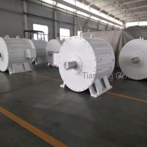 Ffl-200kw/100rpm/AC690V Permanent Magnet Alternator (PMG/PMA/Hydro)