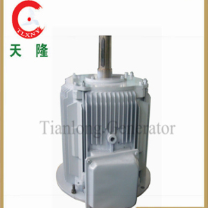 Alternador de ímã permanente Ffl-10kw / 250rpm / DC240V (PMG / PMA / Hydro)