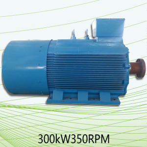 Gerador permanente silencioso da CA 300 Kw do ímã para a venda