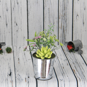 23x9.5cm Artificial/Decorative Pot Succulent,Iron Pot