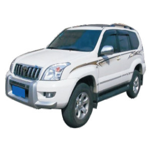 Auto Body Parts for Toyota Prado 120 2002